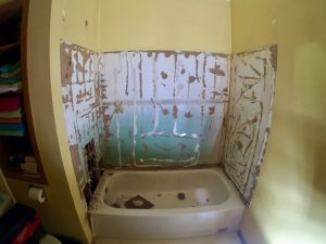 Shower Remodel: Before